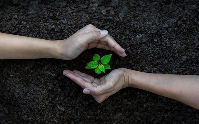 Zdravé a ekologické bývanie