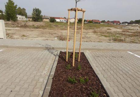 Fotka galérie október 2020  -  Už o pár dní ideme stavať lokalitu bytových domov - 9